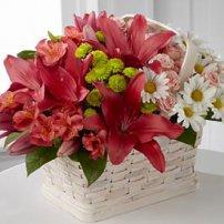 Make Their Day Bouquet, Ecuador