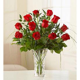 Amazing Roses - Flores en  GUAYAQUIL