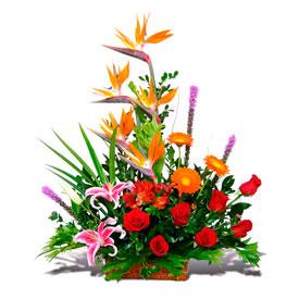 Caricias Exóticas  - Flores en  Ecuador